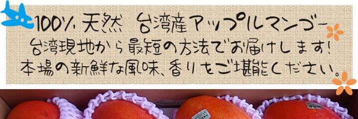 台湾アップルマンゴー01